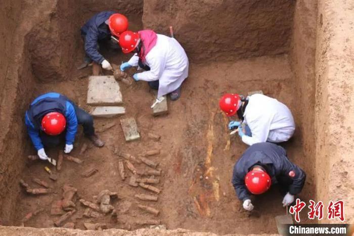 西安考古人的春节:配合地铁八号线 牛年春节考古忙